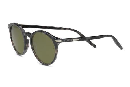 Serengeti Leonora 8842 Shiny Black Tortoise Polarized
