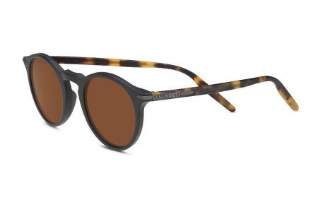 Serengeti Raffaele 8837 Oak Polarized Sonnenbrille